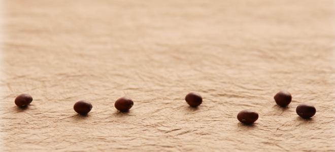だだちゃ豆せんべい 天日干しした完熟だだちゃ豆を使用