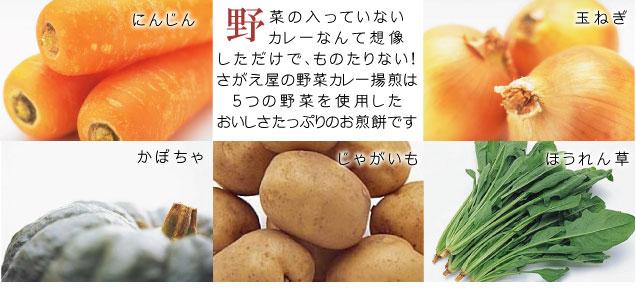 カレーせんべい 五つの野菜の入ったおせんべい