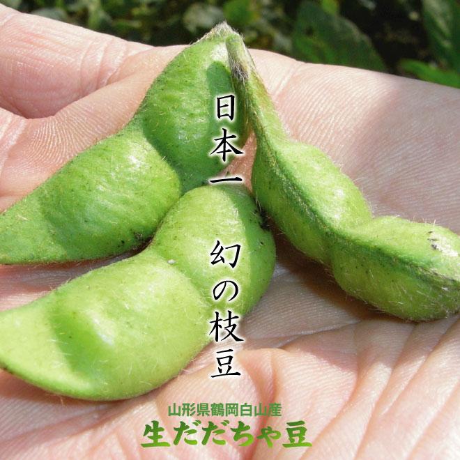 日本一!幻の枝豆!