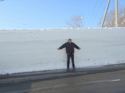 今年は雪の量が少ないですね